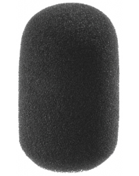 Molitan pro mikrofon